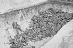 The_Liberation_of_Bergen-belsen_Concentration_Camp_April_1945_BU3778